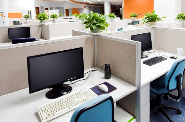 plants in office space