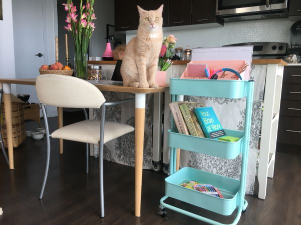Rolling cart by kitchen table as desk